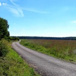 Дорога через поле, щелковский район