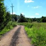 дорога в лес, снт утро, у кармолино